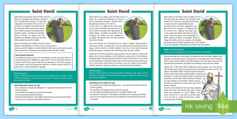 St. David's Year 5 and 6 Differentiated Reading Comprehension Activity - Saint David, Saint David's, Dewi Sant , Gwyl dewi Sant, darllen, reading, Tyddewi, St Davids, mona
