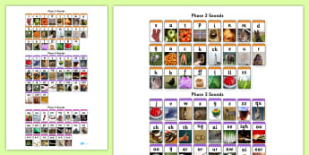 Phase 2 3 and 5 Photo Wall Chart-phase two, phase 2, phase three, phase 3, phase 5, phase five, photo wall chart, photo chart, wall chart, phase chart