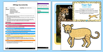 EYFS Cheetah's Spots Finger Gym Plan and Resource Pack
