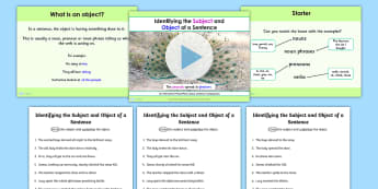 Identifying the Subject and Object of Sentence Lesson Teach Pack