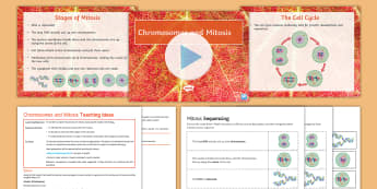 AQA Unit 4.1 Chromosomes and Mitosis Cover Lesson Pack - chromosomes, mitosis, genes, nucleus