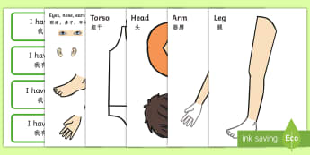 Body Part Counting Cut Out Activity English/Mandarin Chinese - Body Part Counting Cut-Out Activity - ourselves, myself, body parts, human body, oursleves, countng,