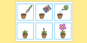 6 Step Sequencing Growing A Flower - Sequencing, Grow, Flower