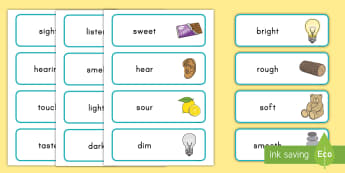 Five Senses Word Cards - Identifying Connections, ELA, Kindergarten, Common Core