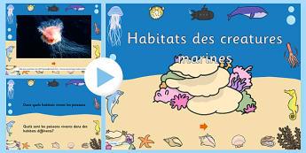 Habitats des creatures marines - français, PowerPoint vidéo sous la mer, les habitats, vidéo, powerpoint