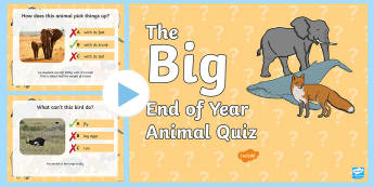 KS1 The Big End of Year Animal Quiz PowerPoint  - KS1 Transition Game