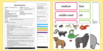 EYFS Animal Line up Adult Input Plan and Resource Pack - EYFS, Eric Carle, The Bad Tempered Ladybird, minibeasts, animals, size, time, adult led plan