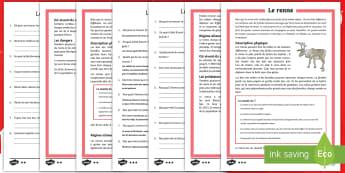 Compréhension écrite différenciée : Le renne - animaux, saison, environnement, mode de vie, cycle 2, cycle 3,French