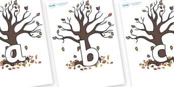 Phoneme Set on Autumn Trees - Phoneme set, phonemes, phoneme, Letters and Sounds, DfES, display, Phase 1, Phase 2, Phase 3, Phase 5, Foundation, Literacy