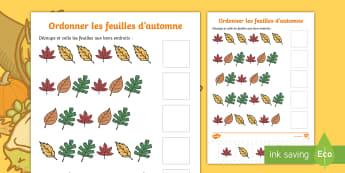 Feuille d'activités : Ordonner les feuilles d'automne - Mathématiques, suites organisées, cycle 1, cycle 2, séquence