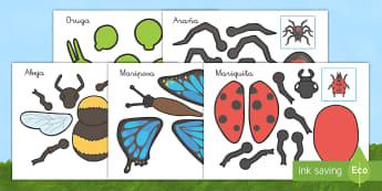 Actividad de encuadernadores: Bichos - libélula, abeja, caracol, hormiga, típula, escarabajo, mariposa, oruga, gusano, mariquita, cochini