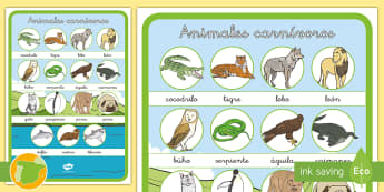 Animales carnívoros Tapiz de vocabulario - animales, clasificación, Carnívoros, grupos, dieta,Spanish