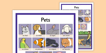 French Pets Word Grid - french, pets, word grid, word, grid, language