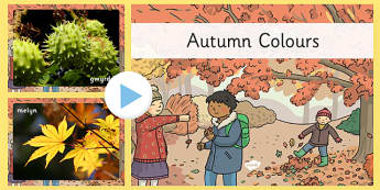 Autumn Colours Photo PowerPoint Welsh - cymraeg, autumn, colours, photo, powerpoint