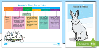 Animals in Winter Guided Reader Teaching Resource Pack - Hibernation, hibernate, Migration, Reading, Nonfiction, fact, information, non-fiction