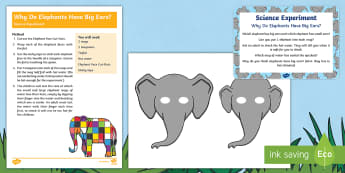EYFS Why Do Elephants Have Big Ears? Science Experiment and Prompt Card Pack - Elmer, David McKee, colour, rainbow, patchwork, animals, Wilbur, Dumbo