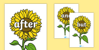 Connectives on Sunflowers - Connectives, VCOP, connective resources, connectives display words, connective displays