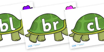 Initial Letter Blends on Tortoise - Initial Letters, initial letter, letter blend, letter blends, consonant, consonants, digraph, trigraph, literacy, alphabet, letters, foundation stage literacy