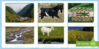 The Three Billy Goats Gruff Display Photos - EYFS, Early Years, KS1, The Three Billy Goats Gruff, traditional tales, goats, troll, bridges.