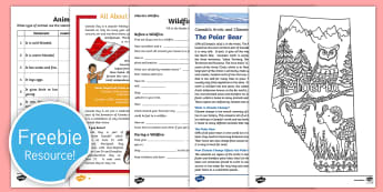 Free Canada Taster Resource Pack - Free sample pack, teaching resources, Twinkl, Canada, Teachers, teaching ideas