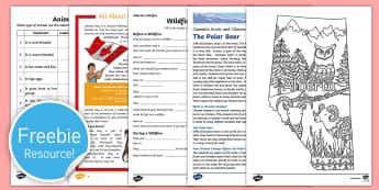 Free Canada Taster Resource Pack - Free sample pack, teaching resources, Twinkl, Canada, Teachers, teaching ideas