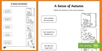 A Sense of Autumn Sentence to Picture Matching Activity Sheet - Worksheet, exploring my world, seasons, Aistear, school trip, forest, blackberries, squirrels, leave