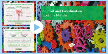 Spot the Mistake: Control and Coordination PowerPoint  - internal environment, constant, negative feedback, temperature, water content, glucose, blood sugar