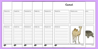 Desert Animals Factfile Worksheets - desert, animals, animal