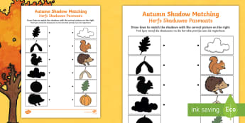 Autumn Shadow Matching Activity Sheet English/Afrikaans - weather, seasons, cold, chilly, wind, leaves, weer, EAL