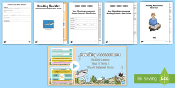 Year 3 Term 1 Non-Fiction Reading Assessment Guided Lesson Teaching Pack - Year 3, Reading Assessment Guided Lesson PowerPoints, KS2, reading, read, assessment, guided, guidan