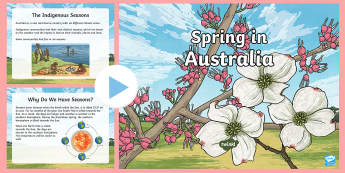 3-6 Spring in Australia PowerPoint - information, Spring, Australia, Seasons, Weather