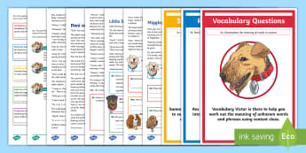 KS2 Journey into Space: Focused Reading Skills Comprehension Pack -  Story, Space Estate Agent, Alien, Sci-Fi, Fiction, Science Fiction, Dogs, SATs, Content Domains