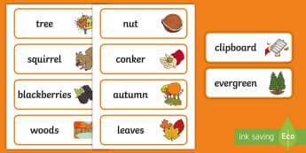 A Sense of Autumn Word Cards - Exploring my world, seasons, Aistear, school trip, forest, blackberries, squirrels, leaves, bark, Di