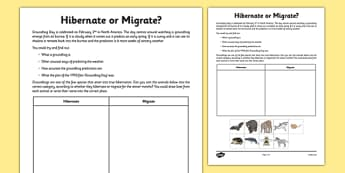 Hibernate or Migrate? Groundhog Day Activity Sheet - hibernate, migrate, animals, worksheet