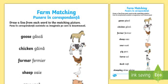 Farm Word and Picture Matching Activity Sheet - English/Romanian - Farm Word and Picture Matching Worksheet - farm, match, matching, fram, mathching, activity sheet, E