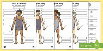 * NEW * Body Parts Labelling Activity - English / Spanish - EAL, Body Parts Labelling Activity - body parts, labelling, activity, label,Spanish-translation