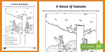 A Sense of Autumn True or False Activity - seasons, Aistear, school trip, forest, blackberries, squirrels, leaves, bark, literacy, reading, ora