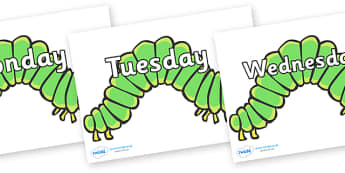 Days of the Week on Hungry Caterpillars to Support Teaching on The Very Hungry Caterpillar - Days of the Week, Weeks poster, week, display, poster, frieze, Days, Day, Monday, Tuesday, Wednesday, Thursday, Friday, Saturday, Sunday