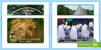 The Zoo Aistear Scenario Cards Gaeilge - Aistear, Infants, English Oral Language, Zoo, Irish, Display Photos, Scenario Cards, Display, Irish