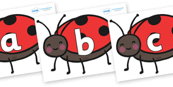Phoneme Set on Ladybirds - Phoneme set, phonemes, phoneme, Letters and Sounds, DfES, display, Phase 1, Phase 2, Phase 3, Phase 5, Foundation, Literacy