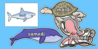 Days of the Week on Sea Creatures French - french, days, week, sea creatures, under the sea,days of the wek,days pf the week, days ofthe week