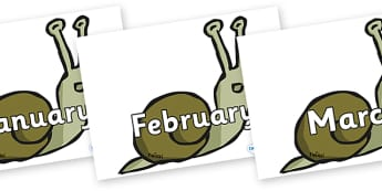 Months of the Year on Snails - Months of the Year, Months poster, Months display, display, poster, frieze, Months, month, January, February, March, April, May, June, July, August, September