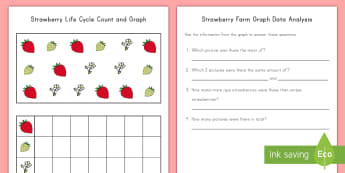 Strawberry Life Cycle Count and Graph Activity Sheet - strawberries, strawberry plants, strawberry farming, strawberry picking, strawberry plant life cycle