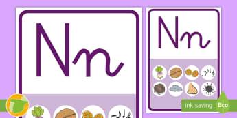 Póster: La letra N - Juego, lecto, leer, lectura, fonemas, sonidos, didáctico, consonantes, Spanish