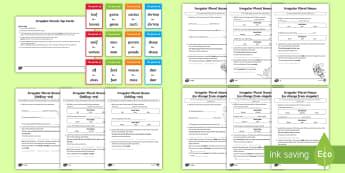 Irregular Plurals Resource Pack - irregular plurals activity sheets, KS1, plural nouns, singular, rules, spag, gps