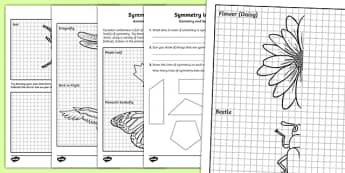 Symmetry in Nature Activity Sheet, worksheet