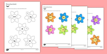 CfE Phoneme Flower Display Pack - CfE, phoneme, ae,a-e,ai, ey, ea