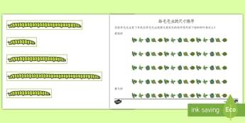 根据尺寸给毛毛虫排序 - 裴烈顺序,尺寸,毛毛虫,长度