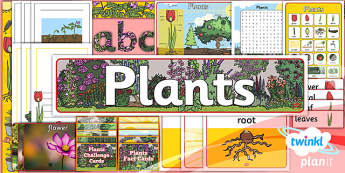Science: Plants Year 1 Unit Additional Resources