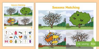 All Four Seasons Activities Primary Resources,Primary,Activities